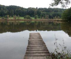 See von Bäumen gesäumt mit Steg auf's Wasser